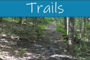 Trails t
