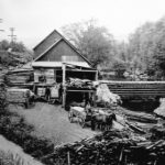 Ward's Upper mill with horses